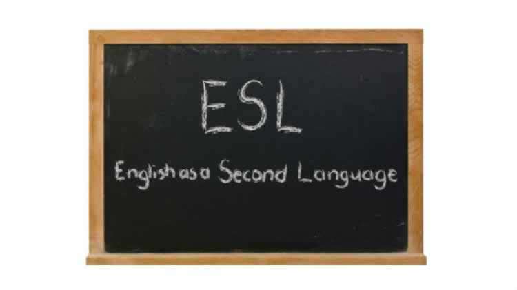 Beginner's English as a Second Language (ESL)