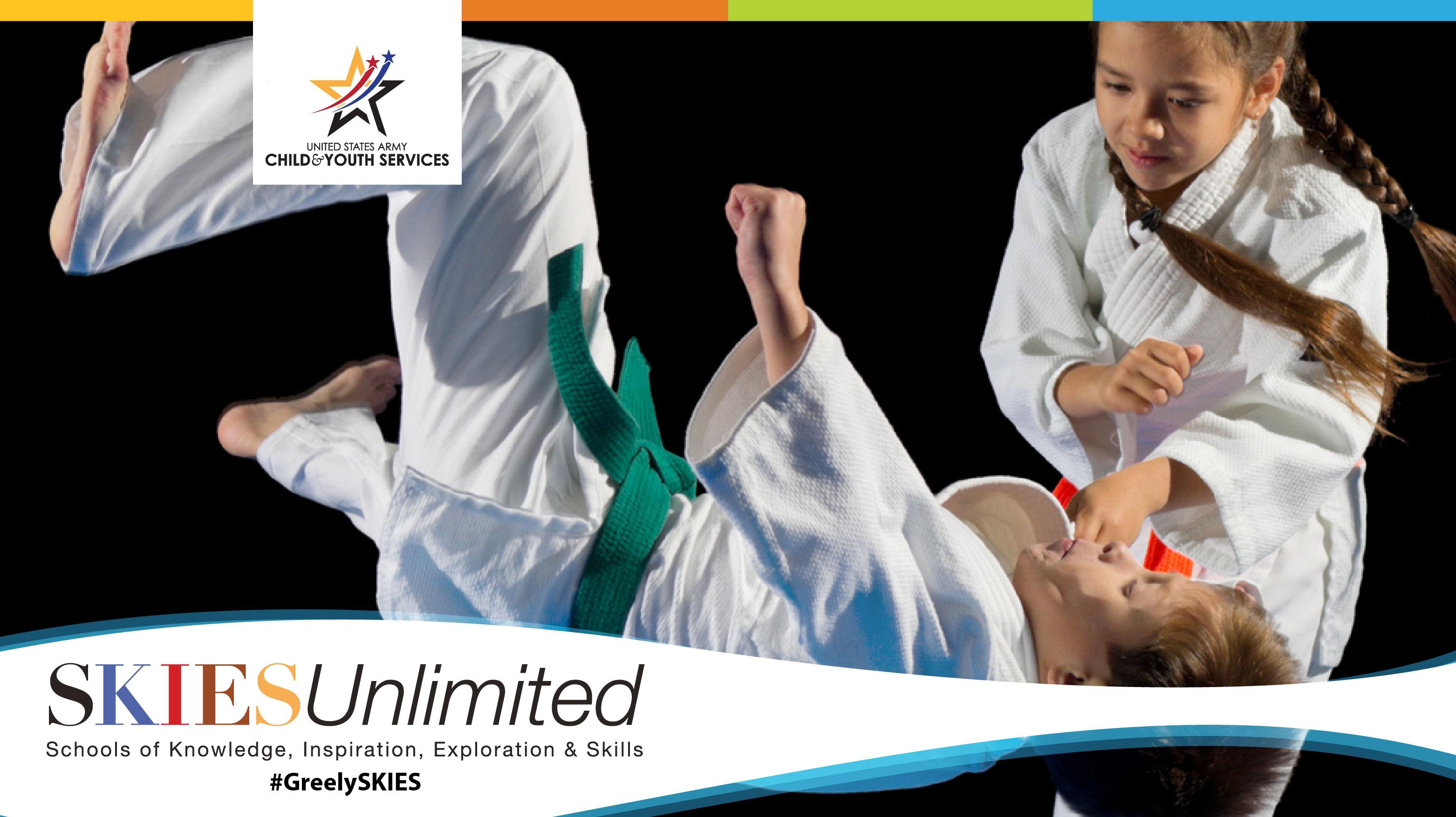 SKIESUnlimited: Karate