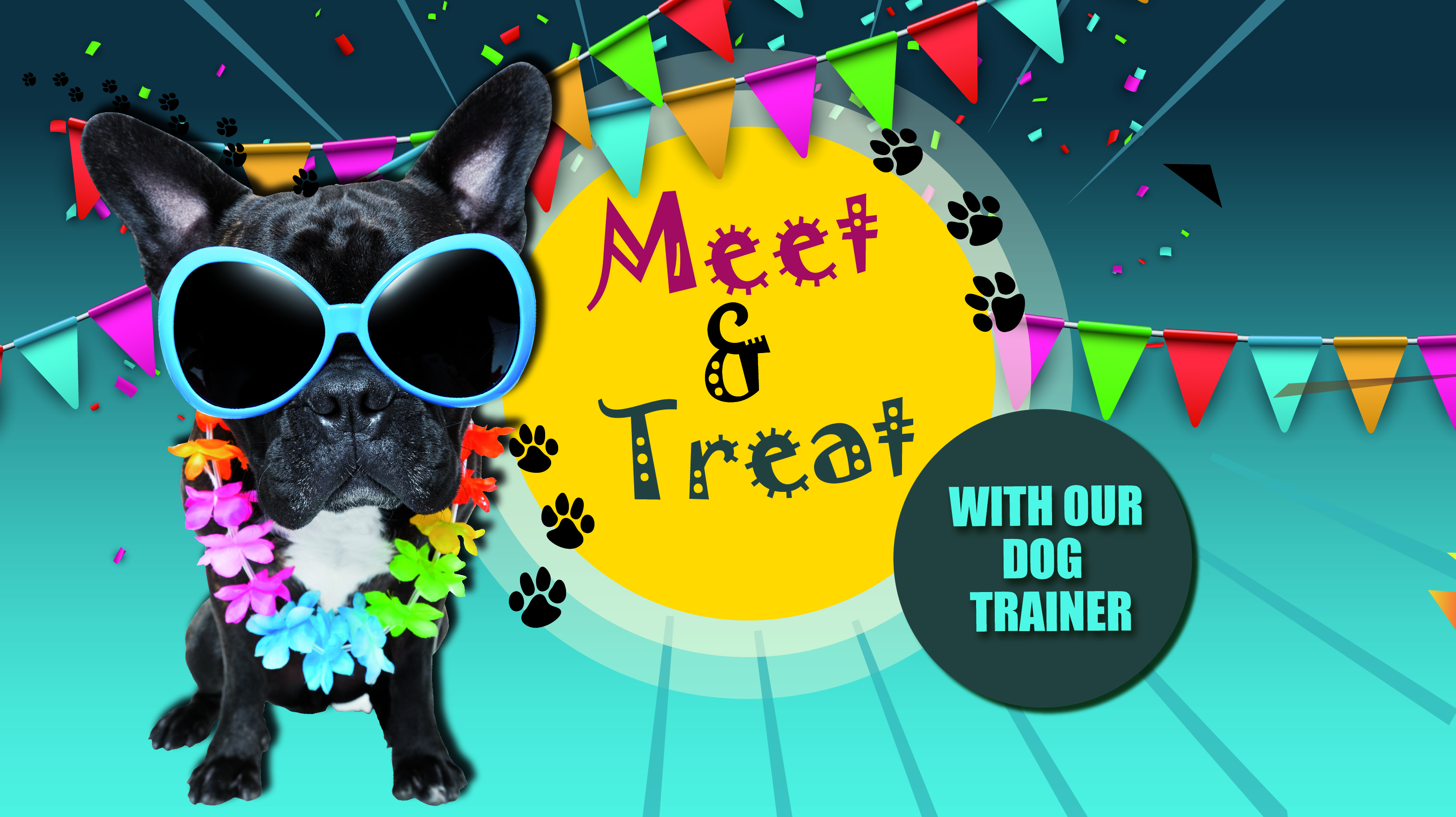 """Meet and Treat"" with our Dog Trainer"