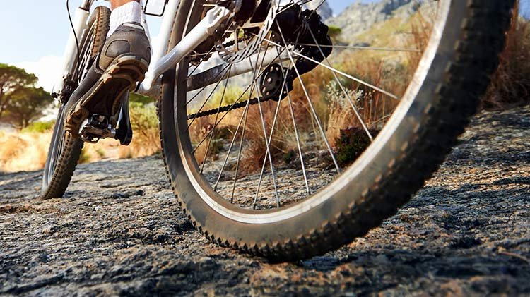 Monday Evening Mountain Bike Rides