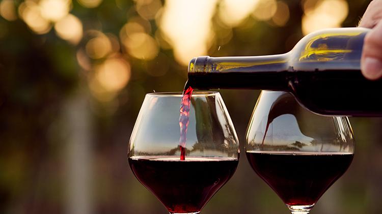 Wine Down Wednesday: Valpolicella