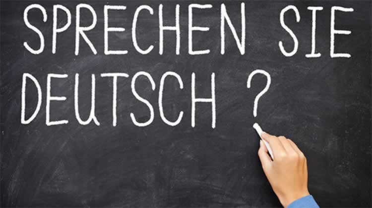 German Language Courses: Beginner's