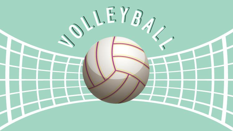 Rec Volleyball